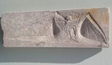 Juvenilis Volans Legend Limestone